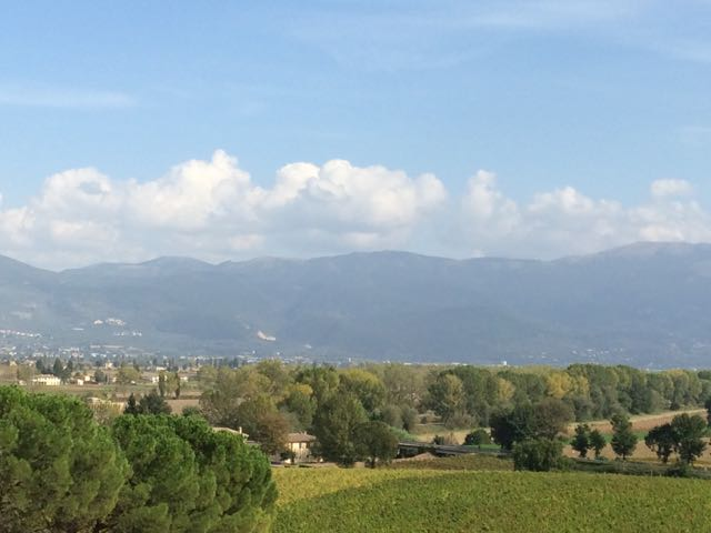 Assisi winery view 1