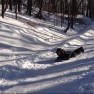 sledding Mary